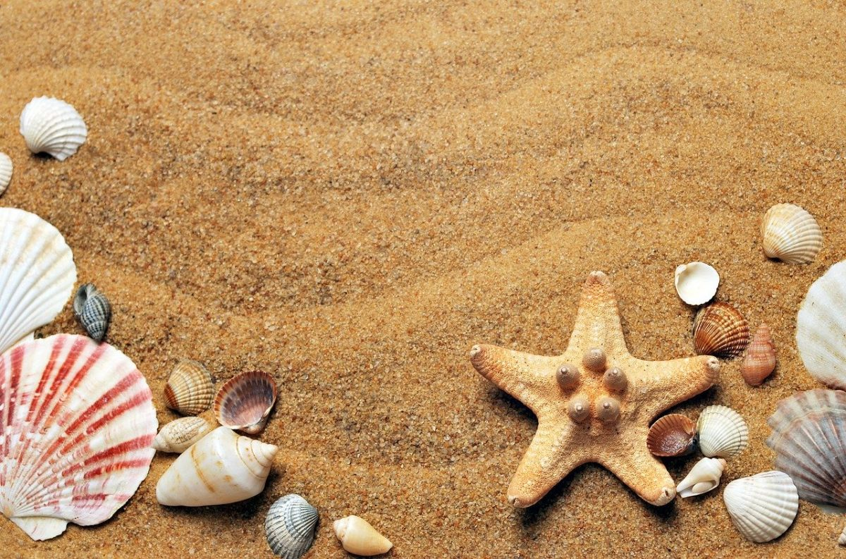 Comment planifier des vacances familiales mémorables ?